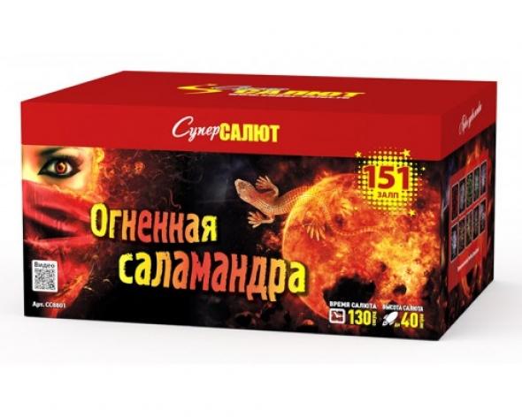 "Салют  "" огненная саламандра "" СС8801"